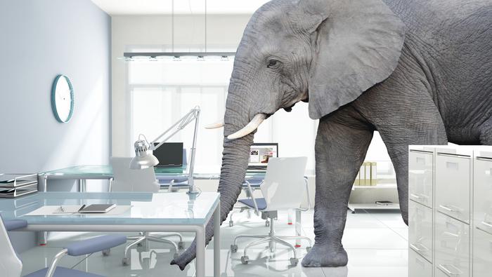Elephant in office